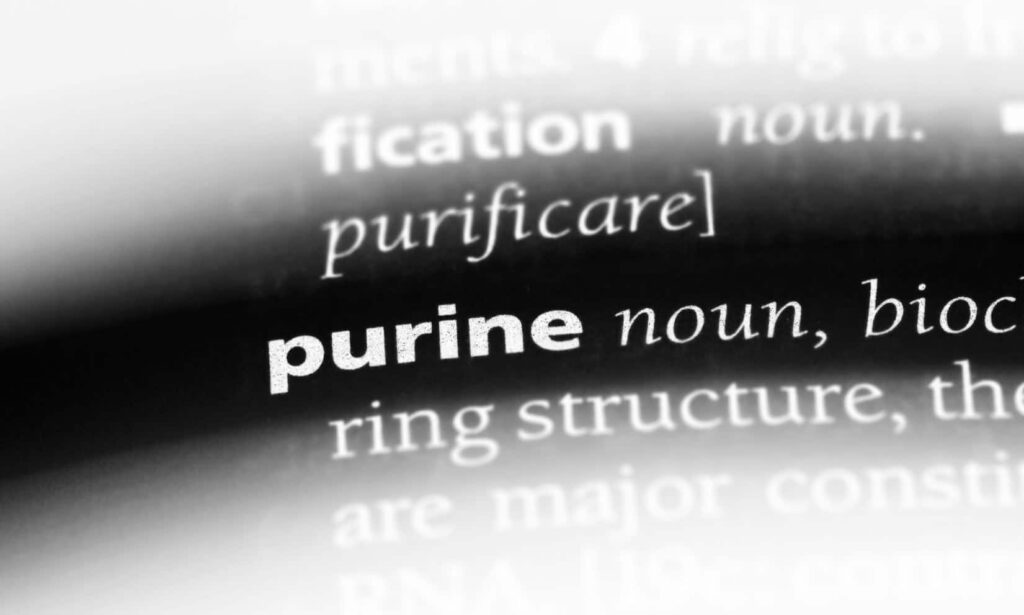 The word purine highlighted in a dictionary.